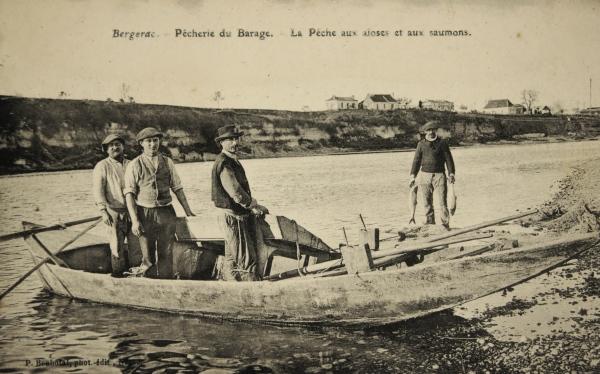 bergerac565
